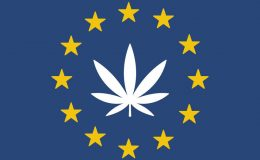 cannabis-european-union